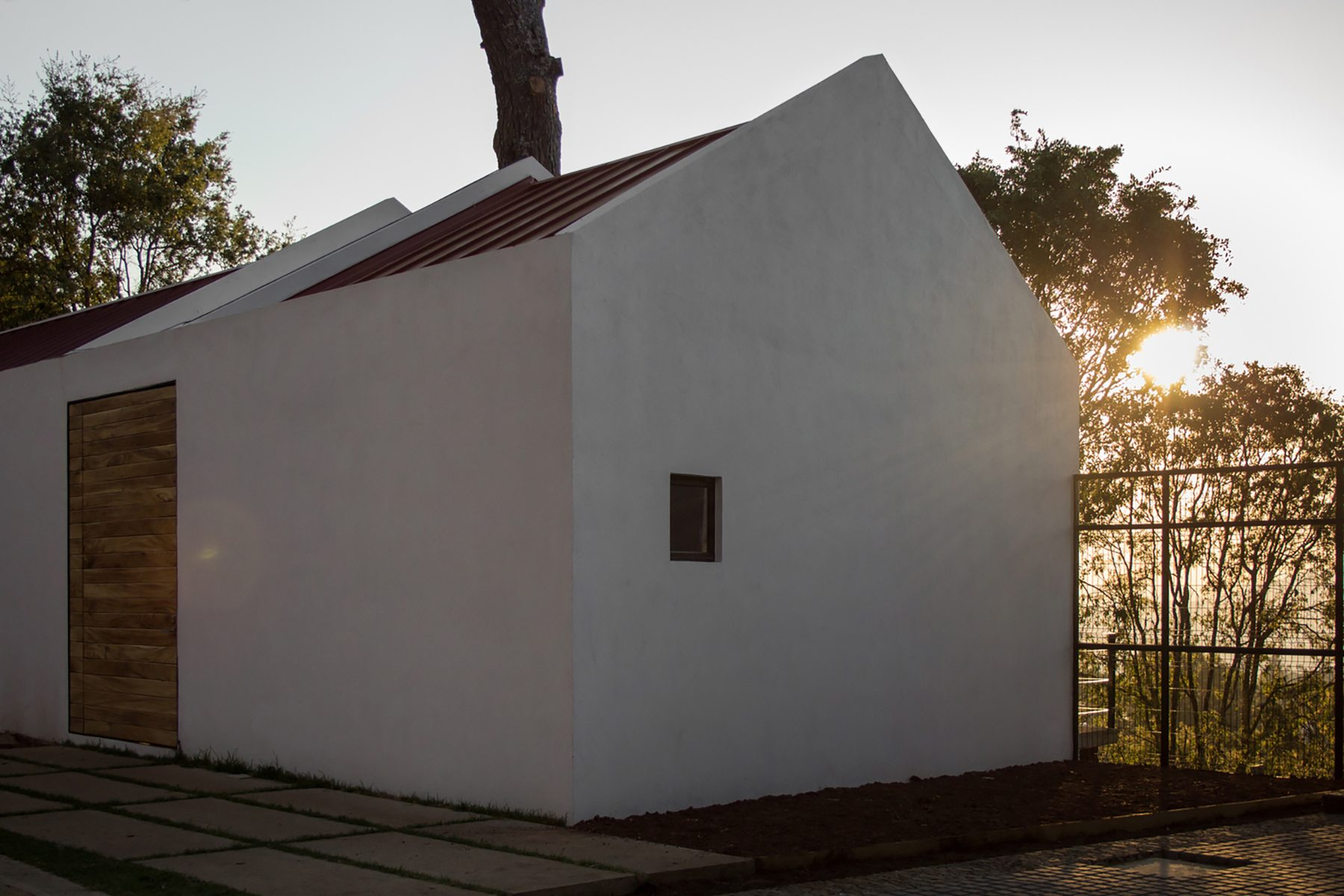 iGNANT-Architecture-EMA-House-Around-A-Pine-Tree-003