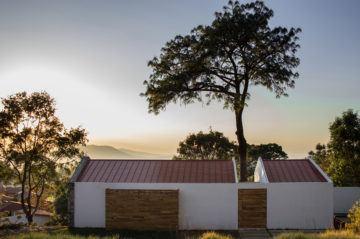 iGNANT-Architecture-EMA-House-Around-A-Pine-Tree-004