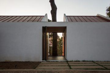 iGNANT-Architecture-EMA-House-Around-A-Pine-Tree-006