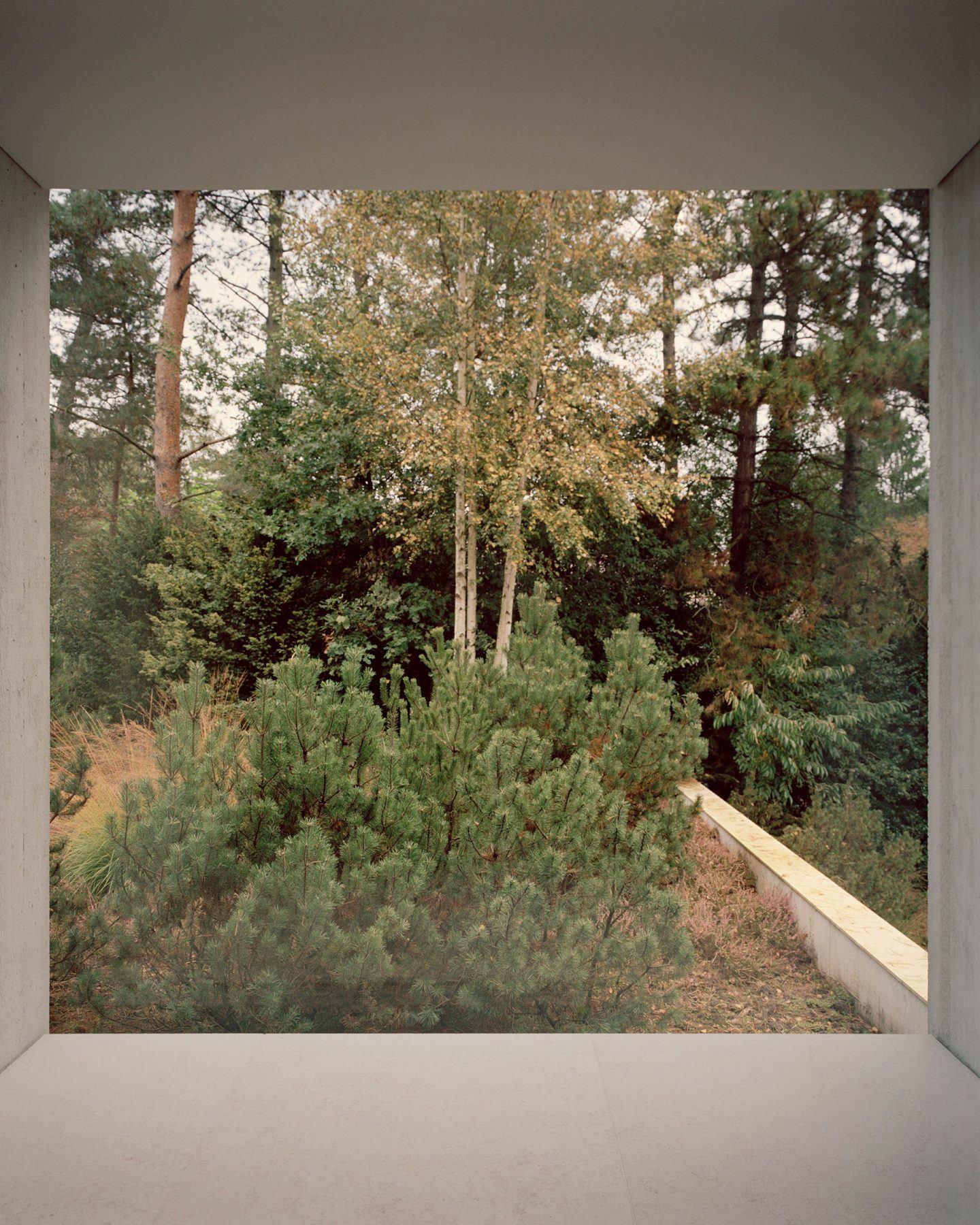 IGNANT-Architecture-Russell-Jones-Villa-Waalre-6