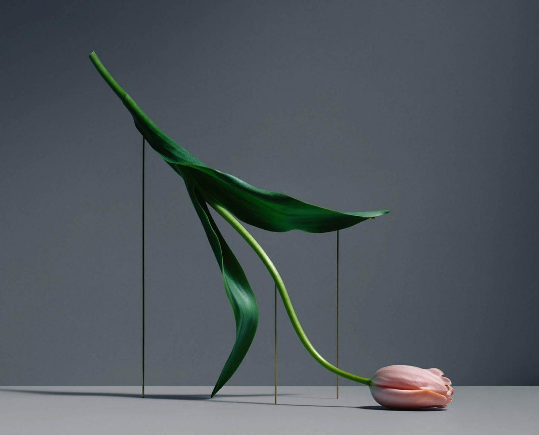 iGNANT-Art-Carl-Kleiner-Postures-001