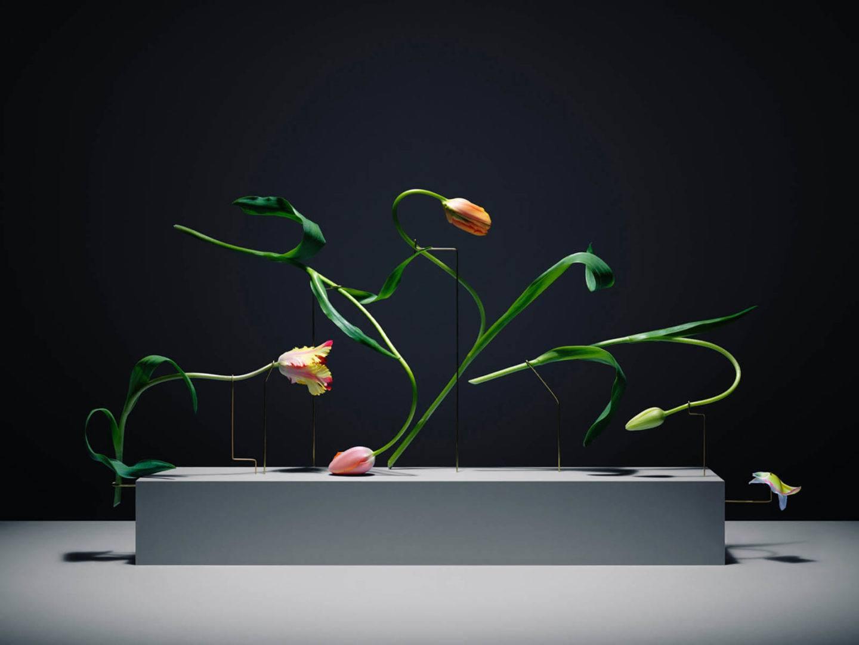 iGNANT-Art-Carl-Kleiner-Postures-002