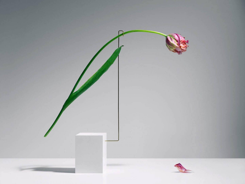 iGNANT-Art-Carl-Kleiner-Postures-003