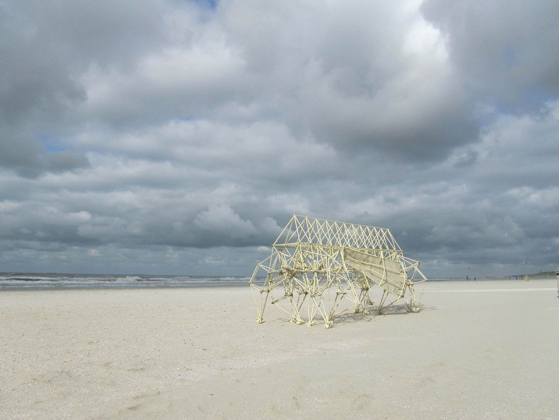 iGNANT-Art-Theo-Jansen-Strandbeests-001