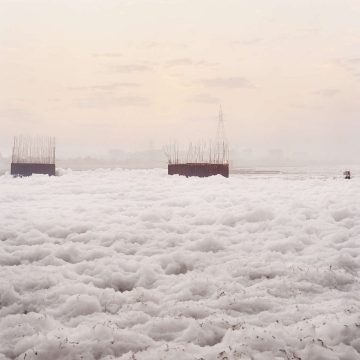 IGNANT-Giulio-Di-Sturco-Photography-Living-Entity-21