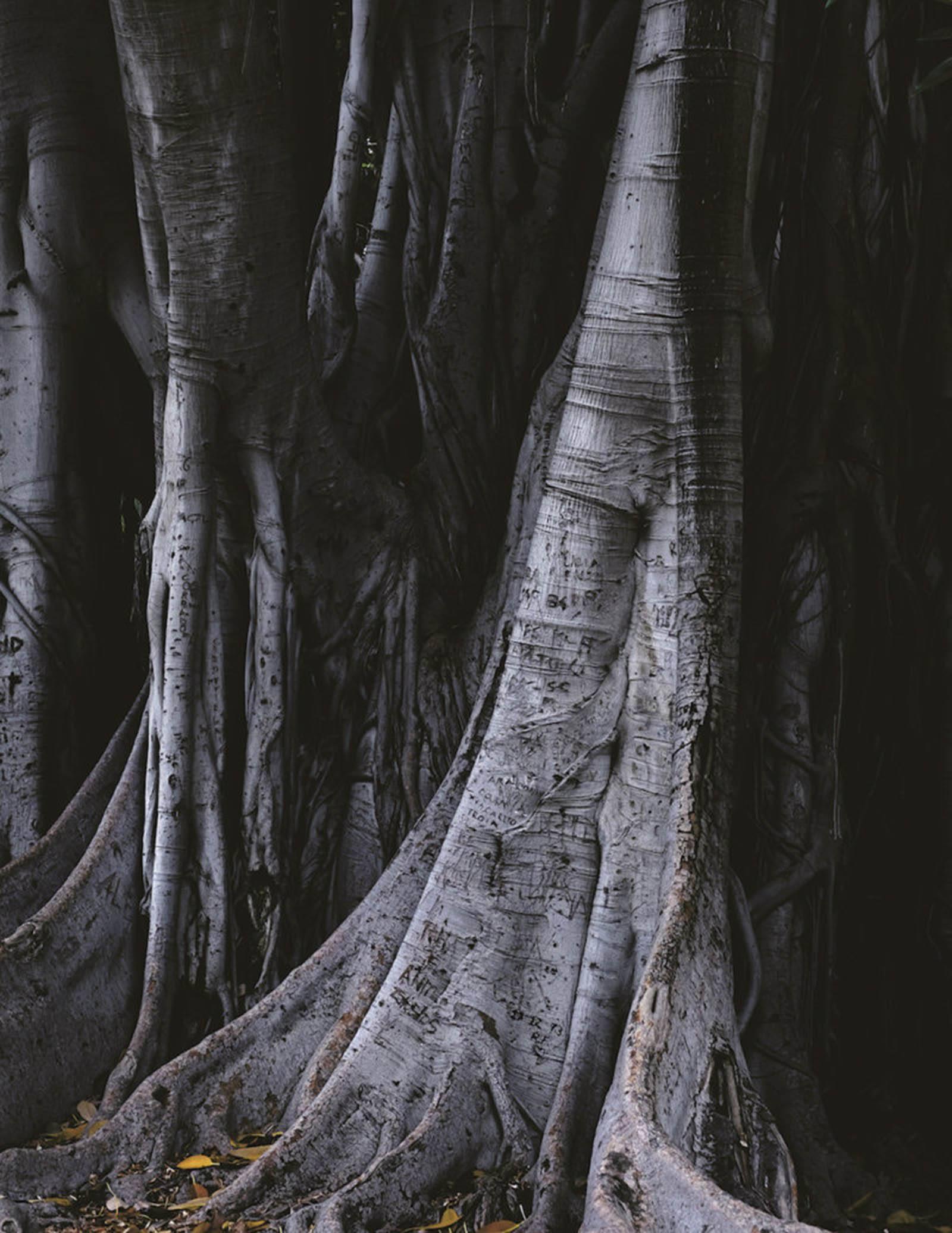 iGNANT-Photography-Amaury-Da-Cunha-Demeure-008