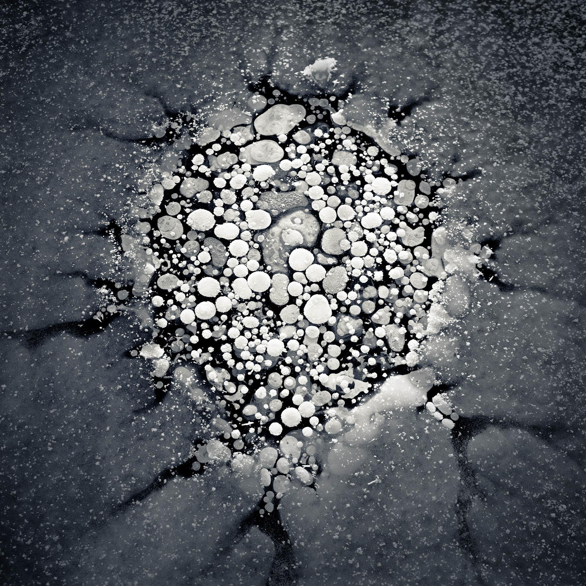iGNANT-Photography-Ryoto-Kajita-Ice-Formations-001