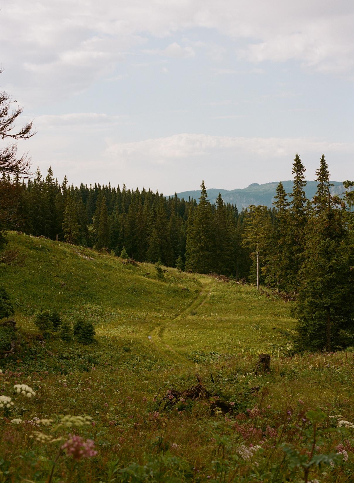 On-The-Road-Austria-Ignant-Daniel-Gebhart-031