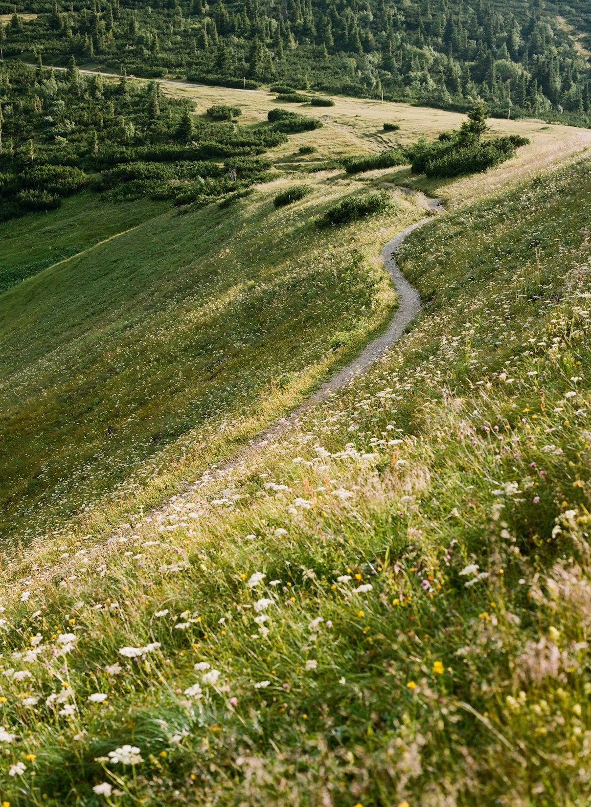 On-The-Road-Austria-Ignant-Daniel-Gebhart-035