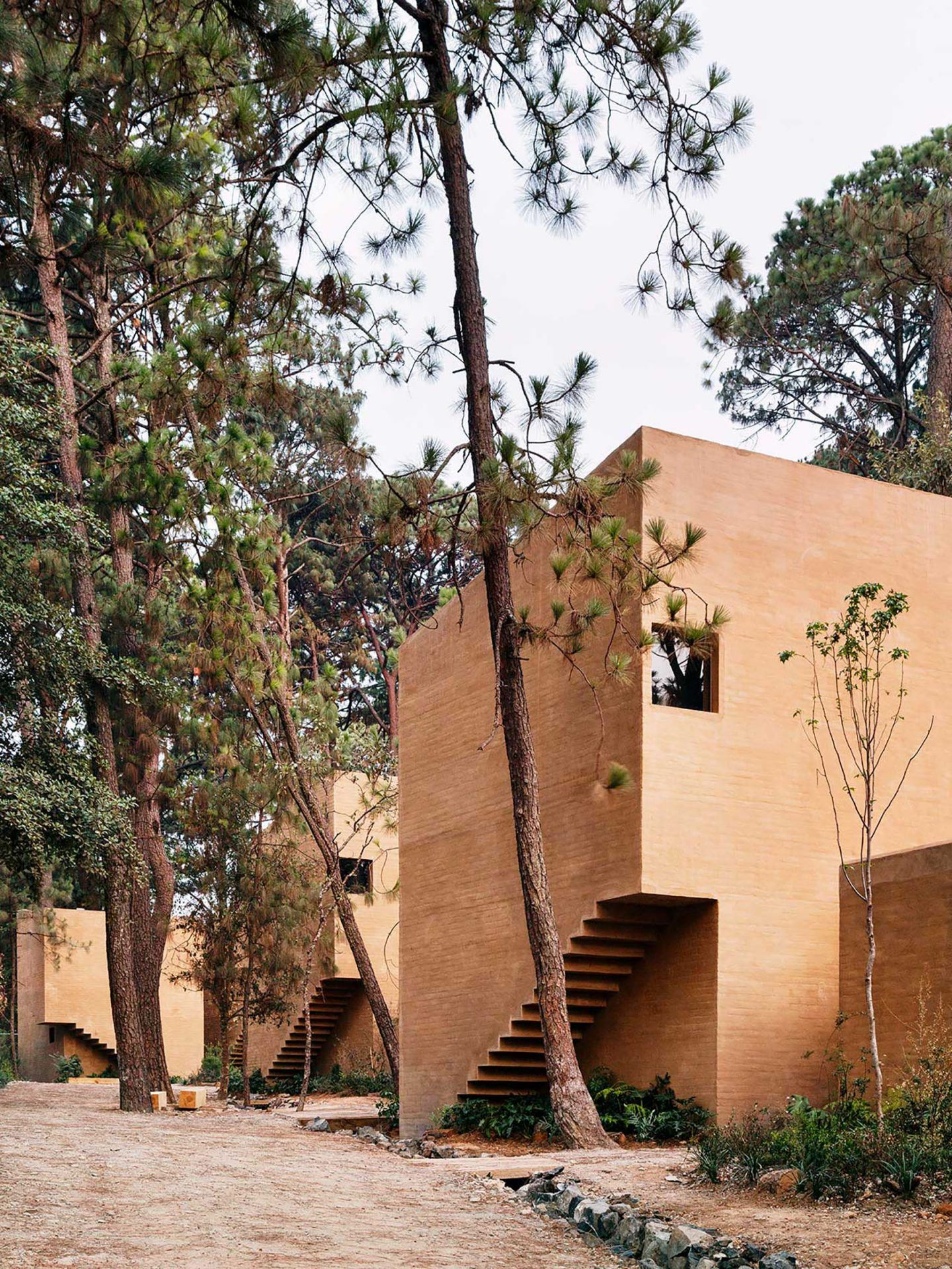IGNANT-Architecture-Taller-Hector-Barroso-Entre-Pinos-14