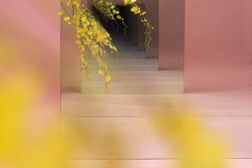 iGNANT-Art-Sarah-Meyohas-Speculations-009