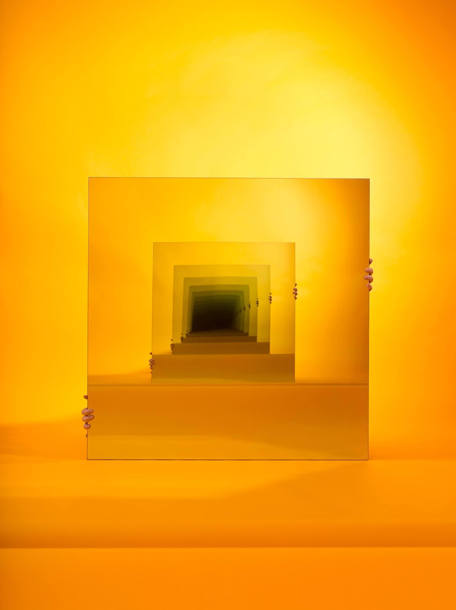 iGNANT-Art-Sarah-Meyohas-Speculations-011