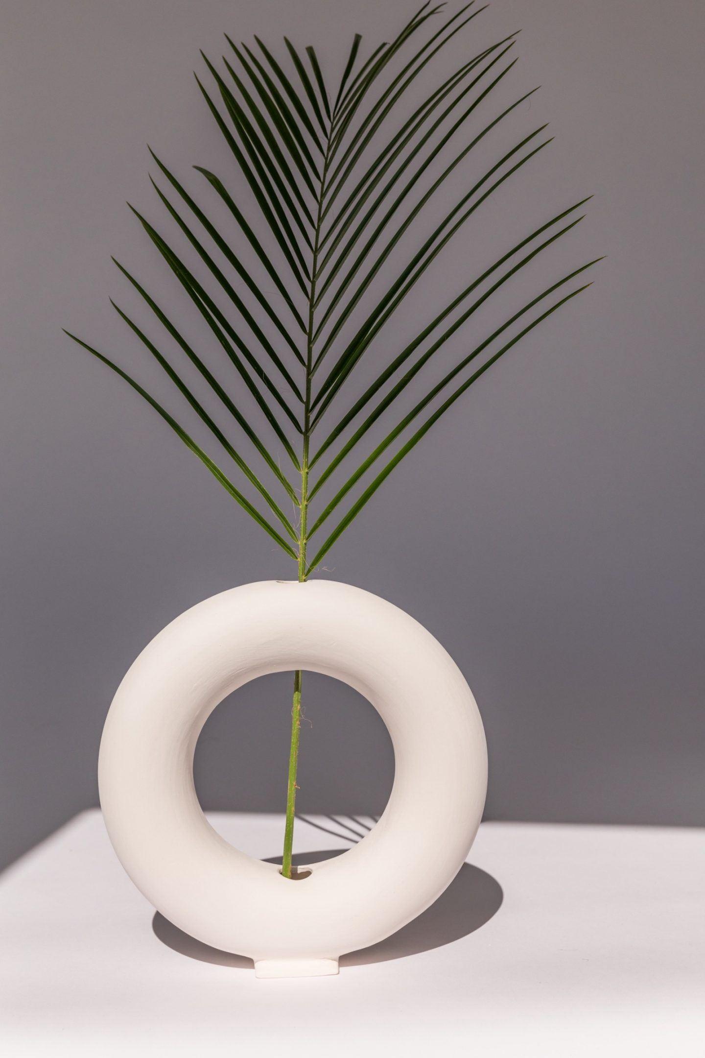 iGNANT-Design-Valeria-Vasi-018