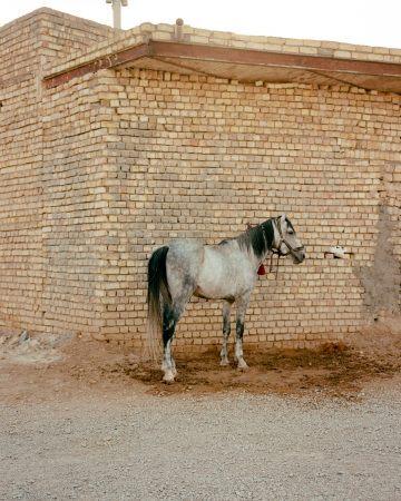 IGNANT-Photography-Matthieu-Litt-Through-The-Walls-15