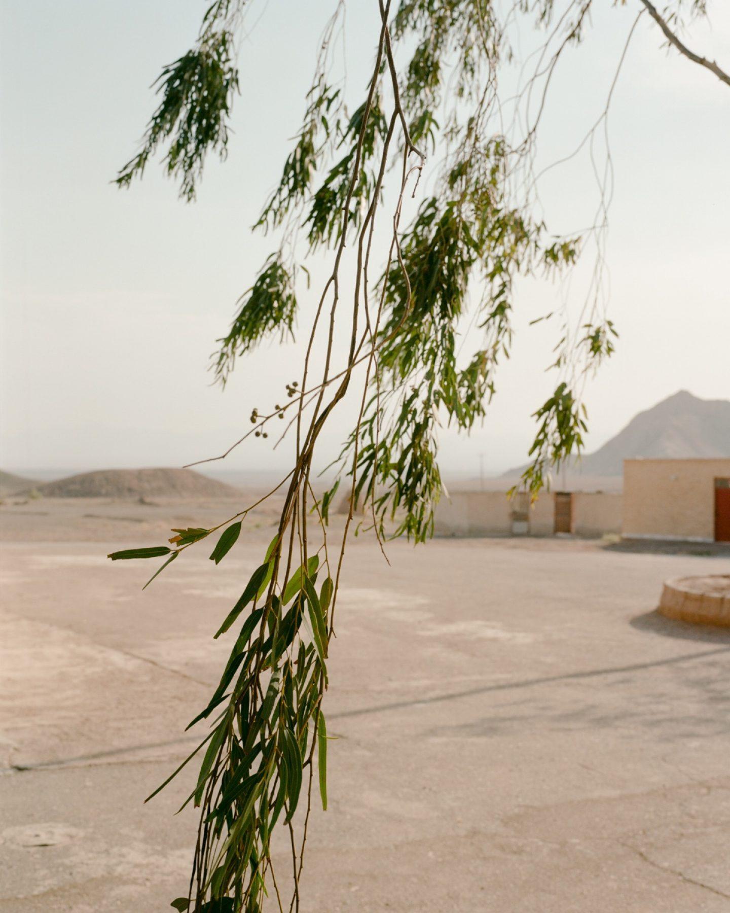 IGNANT-Photography-Matthieu-Litt-Through-The-Walls-8