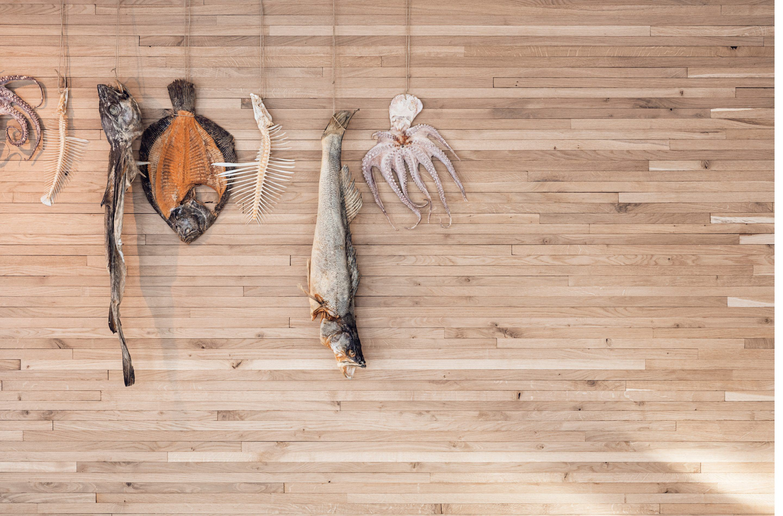 iGNANT-Places-Noma-Studio-David-Thulstrup-004