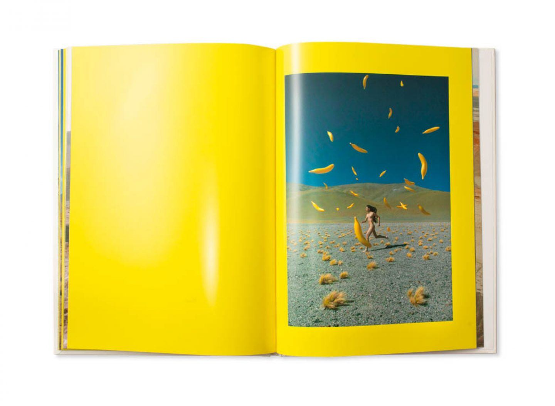 IGNANT-Print-Max-Siedentopf-JP-Bonino-Banana-14