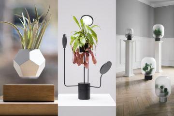 ignant-design-limbus-greenframe-pre2