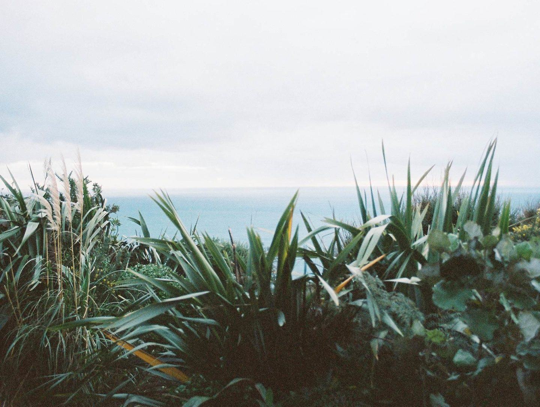 IGNANT-Photography-Chiara-Zonca-It-Devours-006