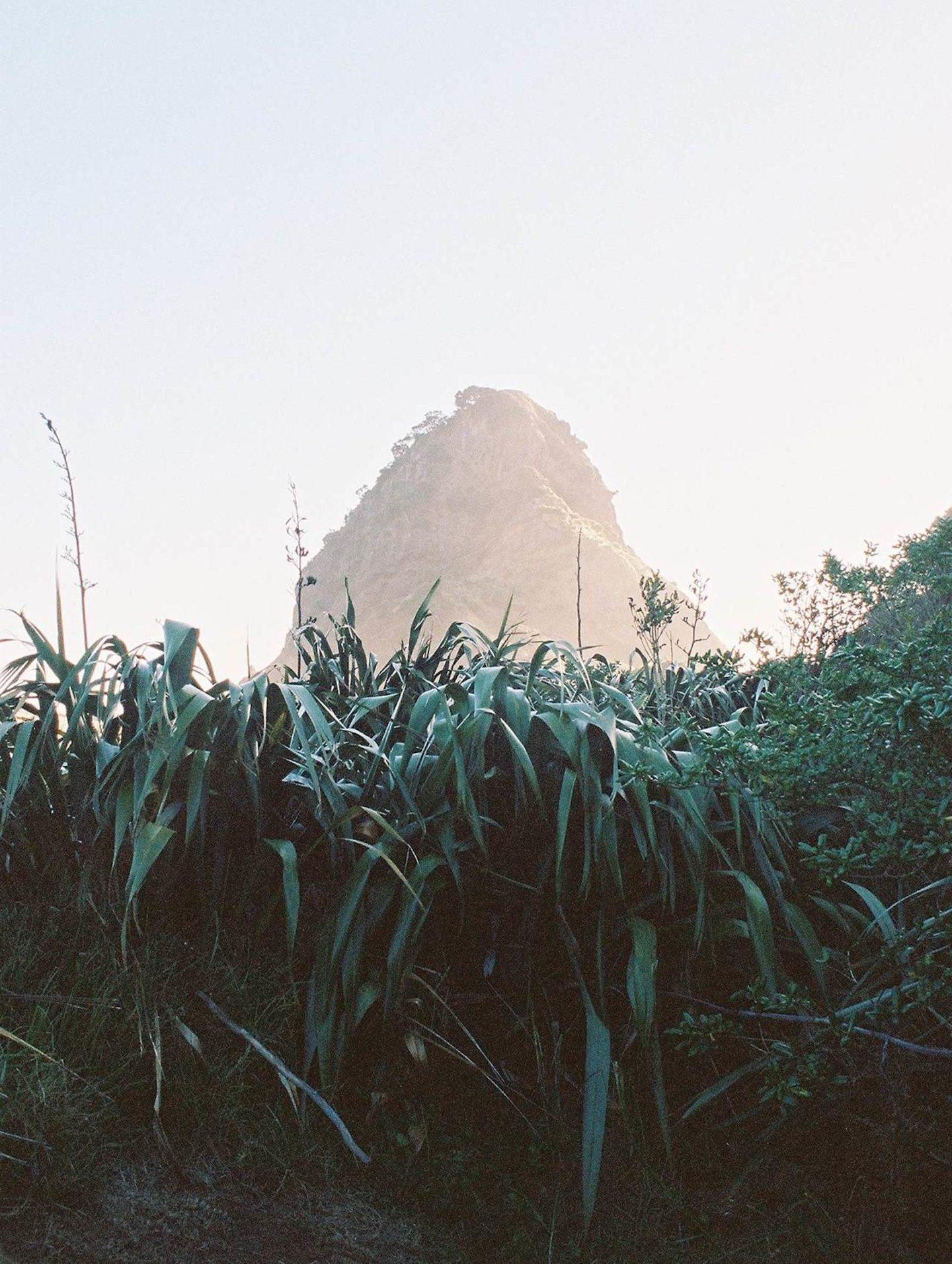 IGNANT-Photography-Chiara-Zonca-It-Devours-011
