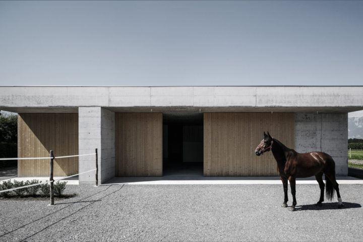 IGNANT-Architecture-Marte.Marte.-Architects-Veterinary-Clinic-11