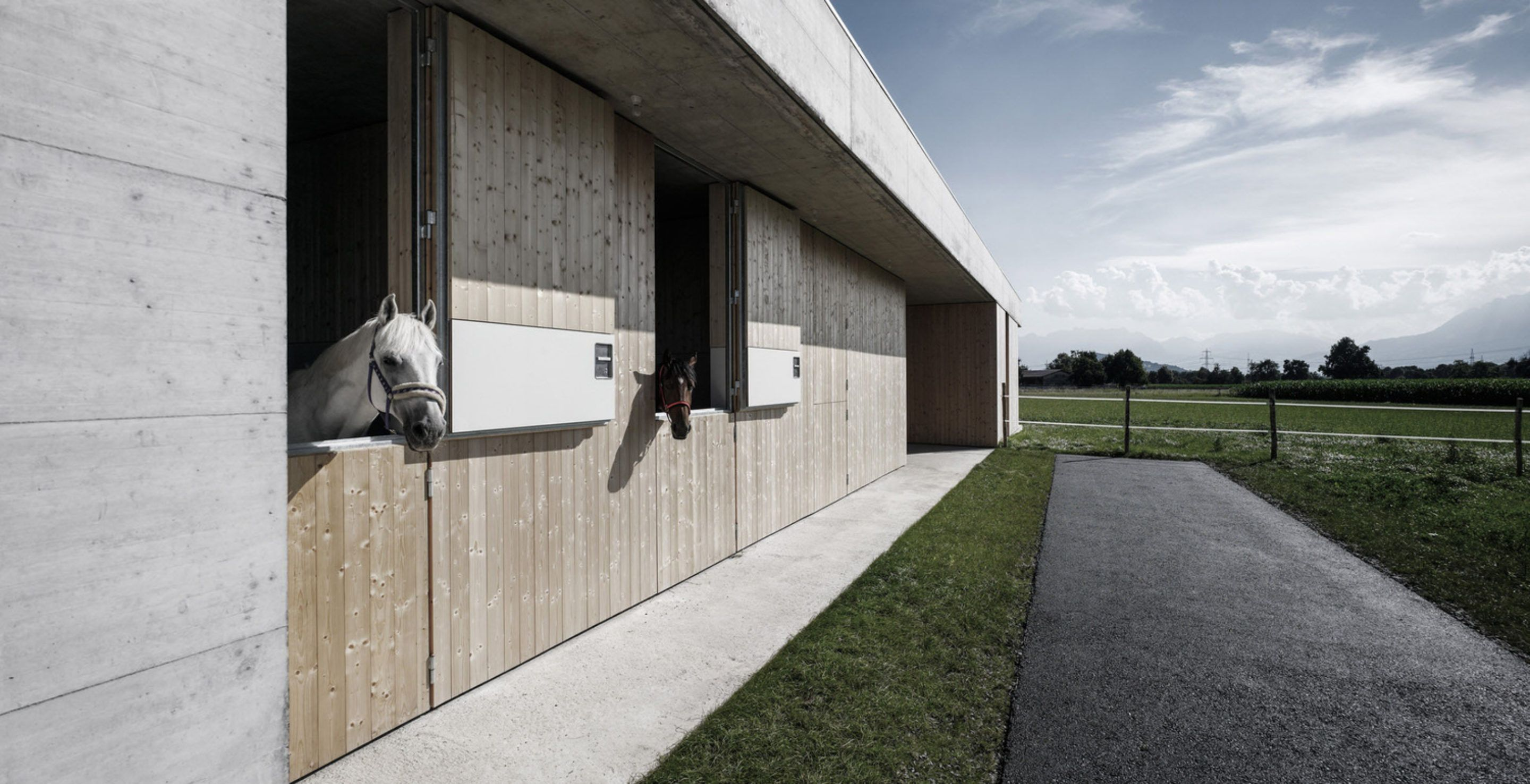 IGNANT-Architecture-Marte.Marte.-Architects-Veterinary-Clinic-3