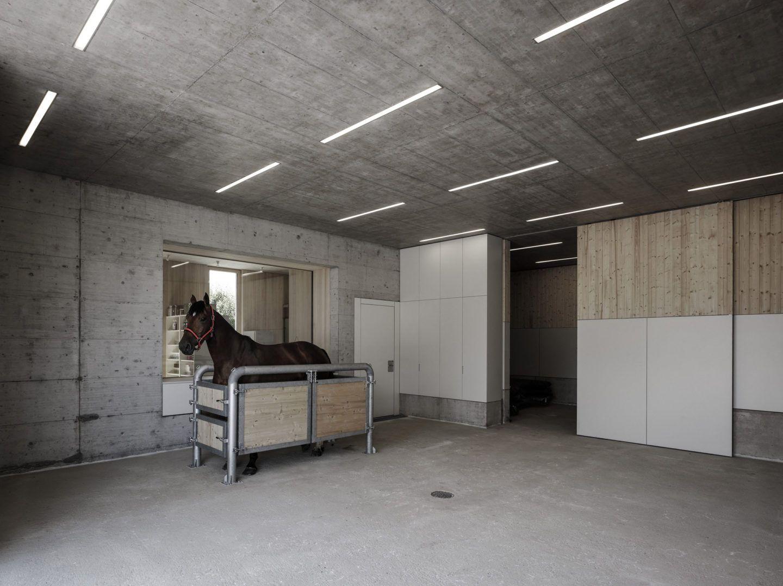 IGNANT-Architecture-Marte.Marte.-Architects-Veterinary-Clinic-7