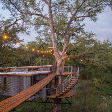 IGNANT-Architecture-Will-Beilharz-Yoki-Treehouse-3