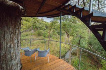 IGNANT-Architecture-Will-Beilharz-Yoki-Treehouse-5