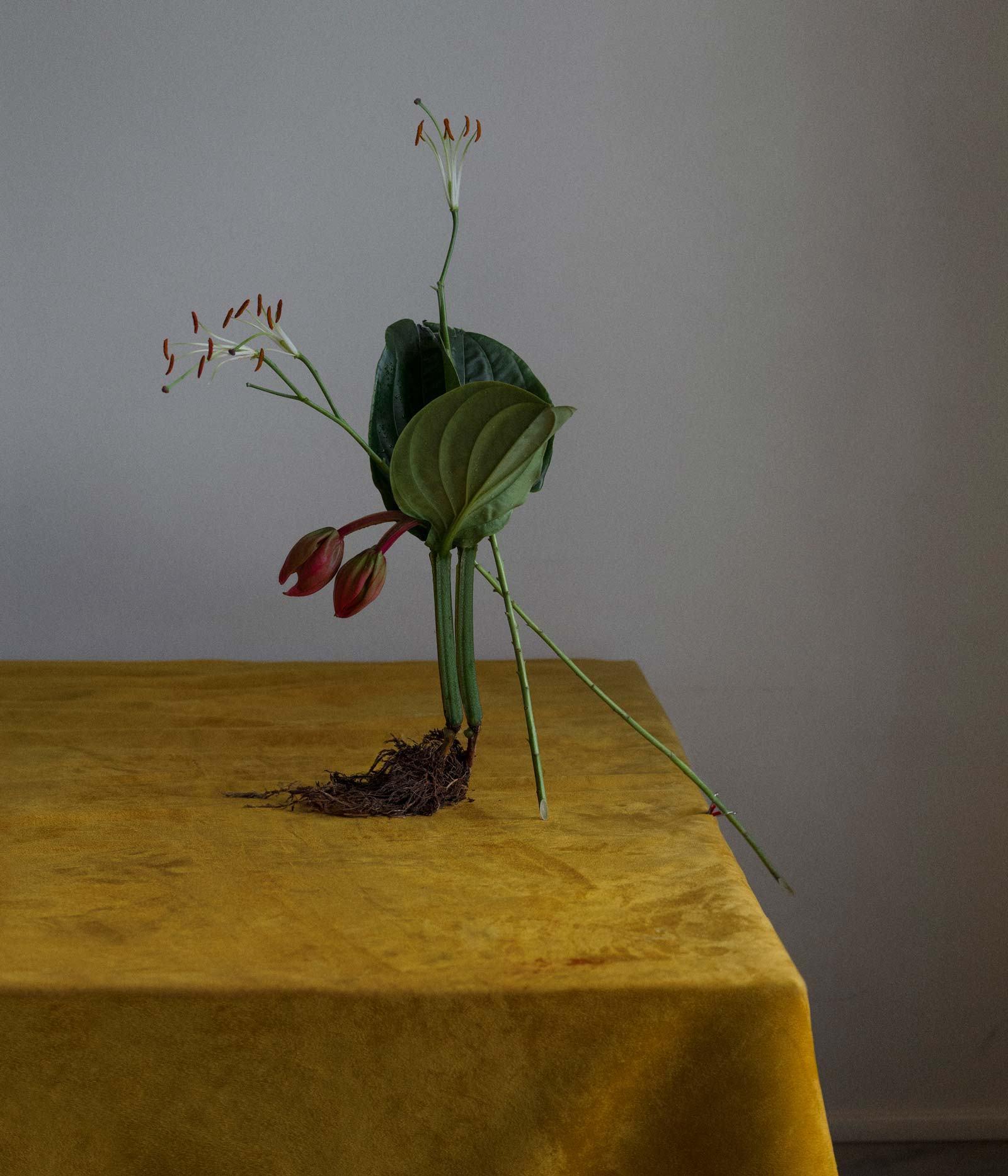 IGNANT-Art-Dominik-Tarabański-Roses-For-Mother-3
