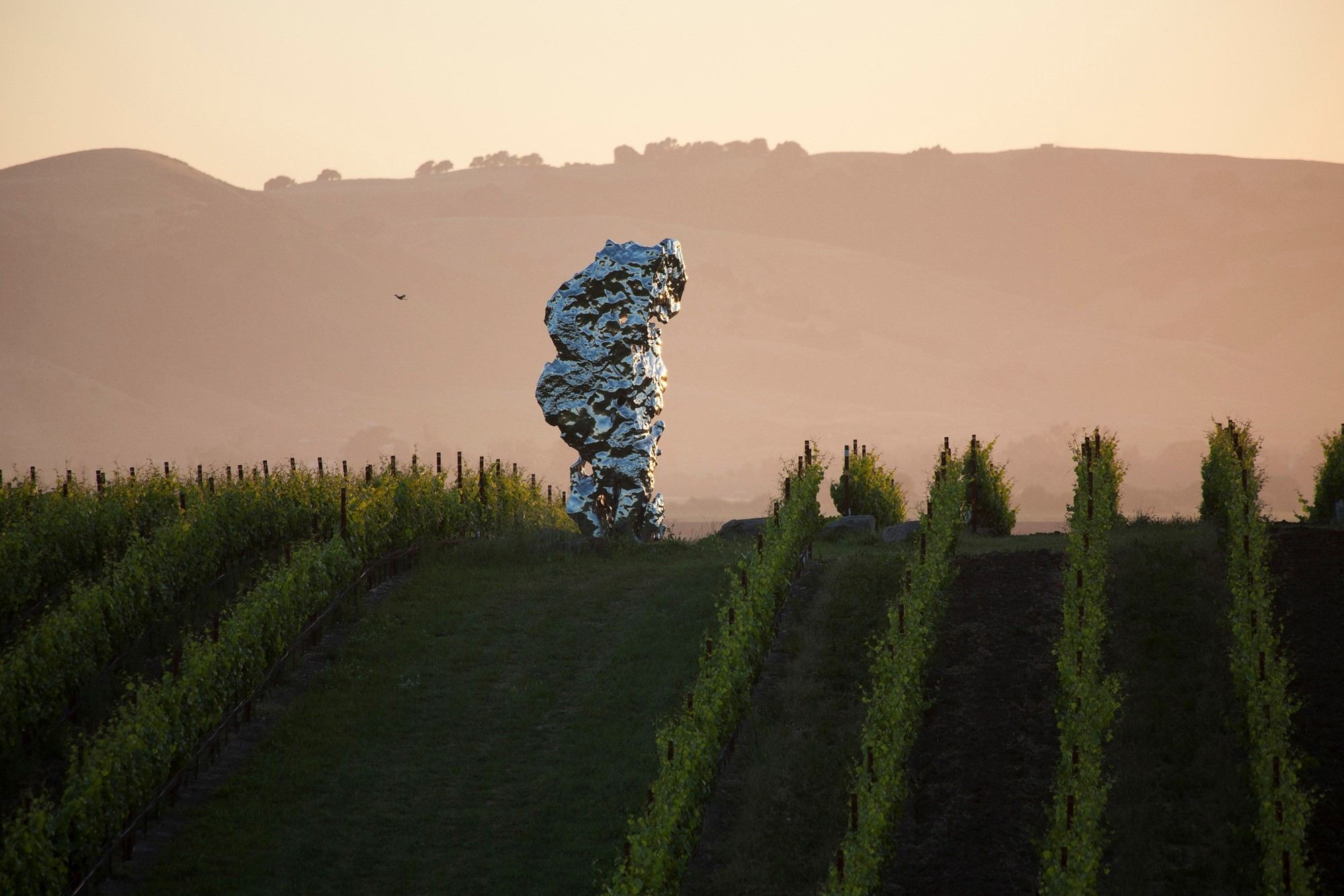 Ai Weiwei and Yayoi Kusama's Sculptures Sit Amidst The Vines In A Californian Winery