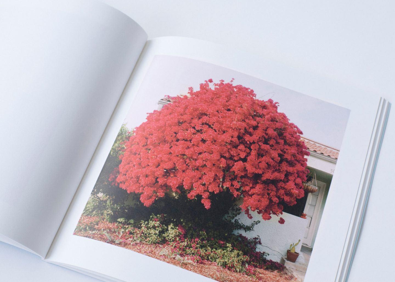 IGNANT-Print-Landon-Speers-Wild-Rose-Book-10