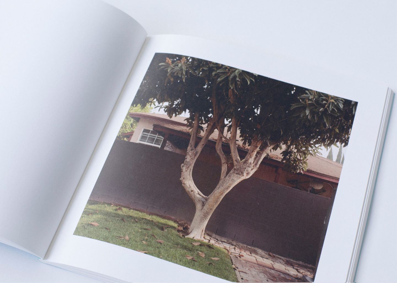 IGNANT-Print-Landon-Speers-Wild-Rose-Book-8
