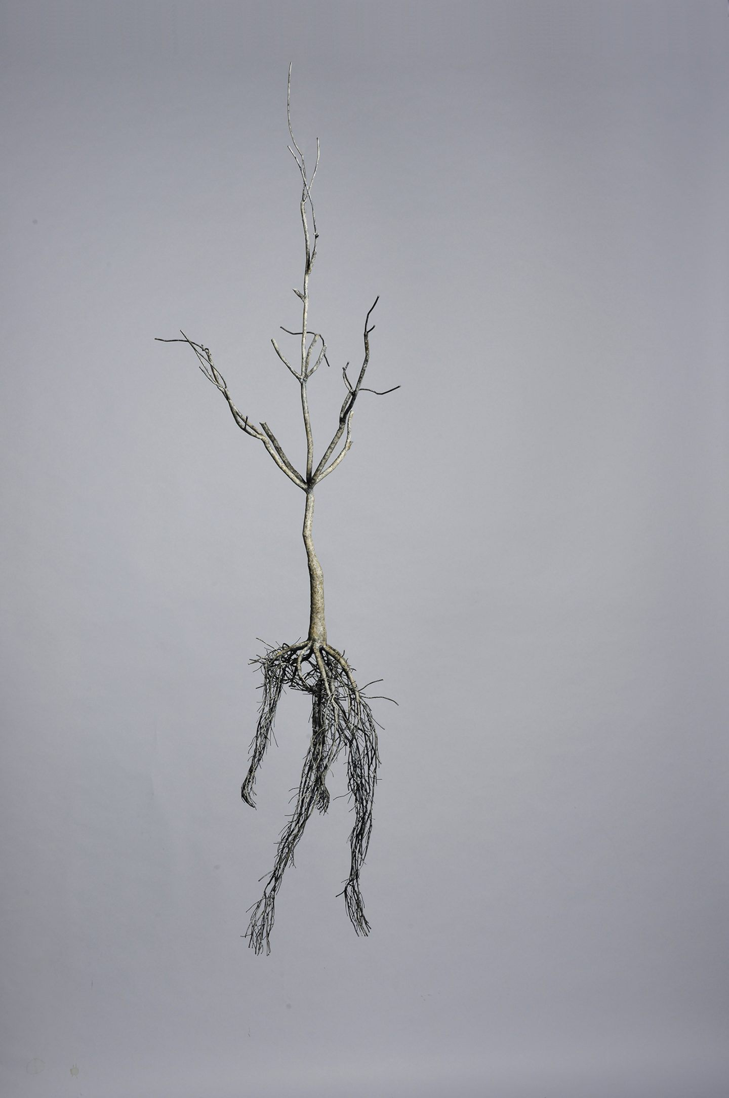 IGNANT-Art-Sun-Huyk-Kim-003