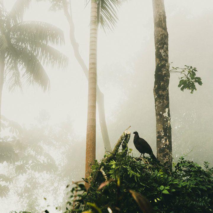 IGNANT-Photography-Antonio-Schubert-009