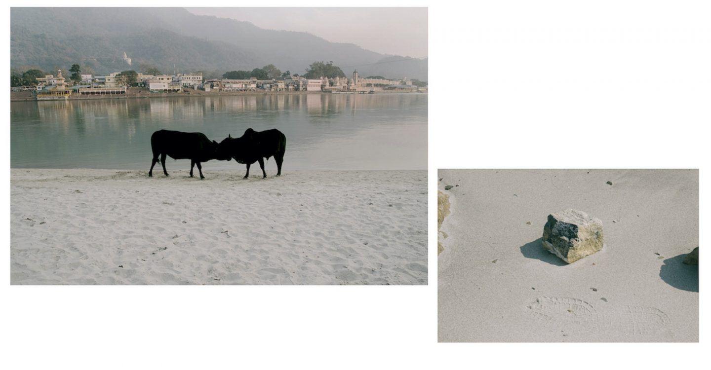 IGNANT-Photography-Debmalya-Roy-Choudhuri-Tat-Tvan-Asi-008