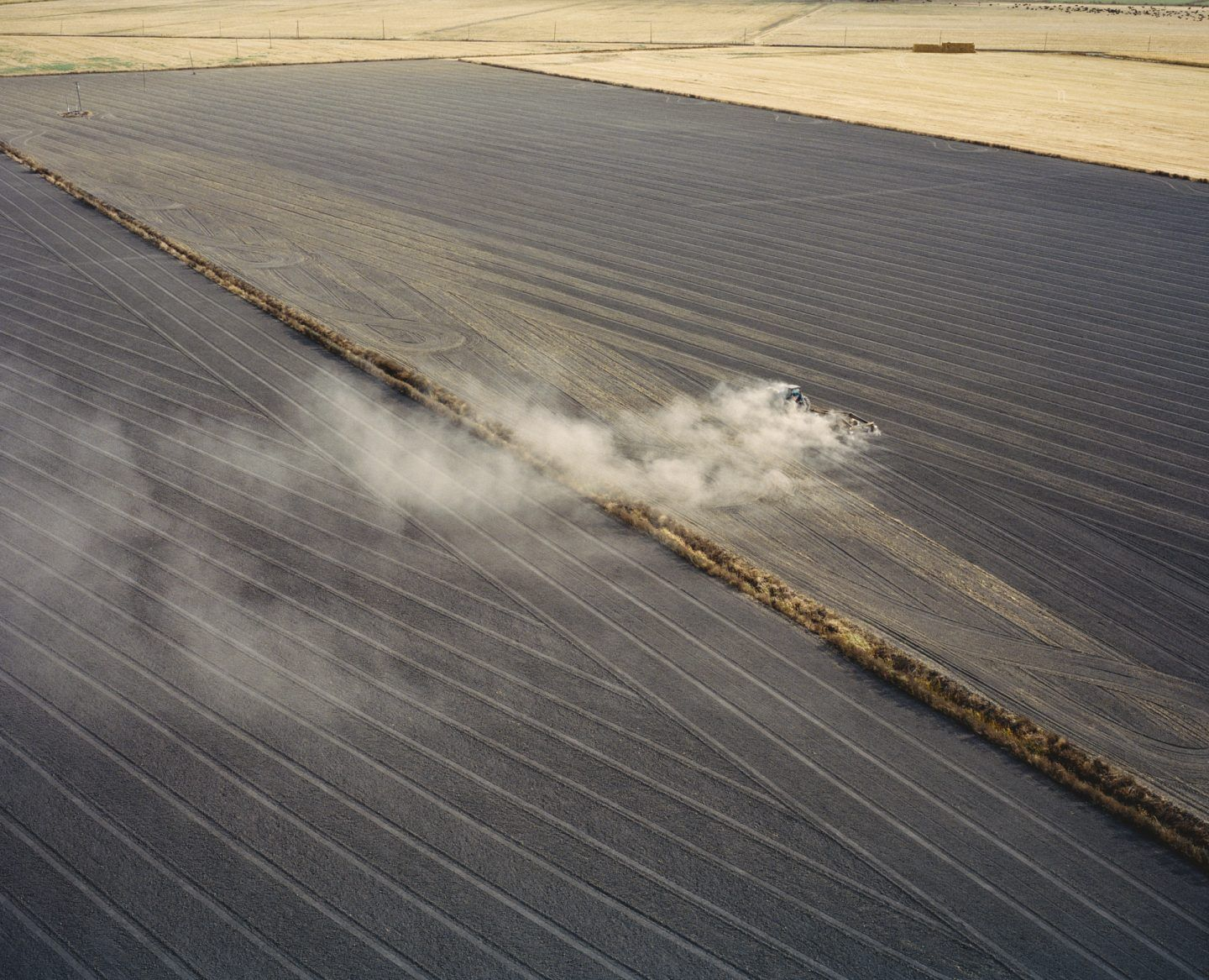 Agriculture fields near San Joaquin River near Antioch, California, USA, 2015.