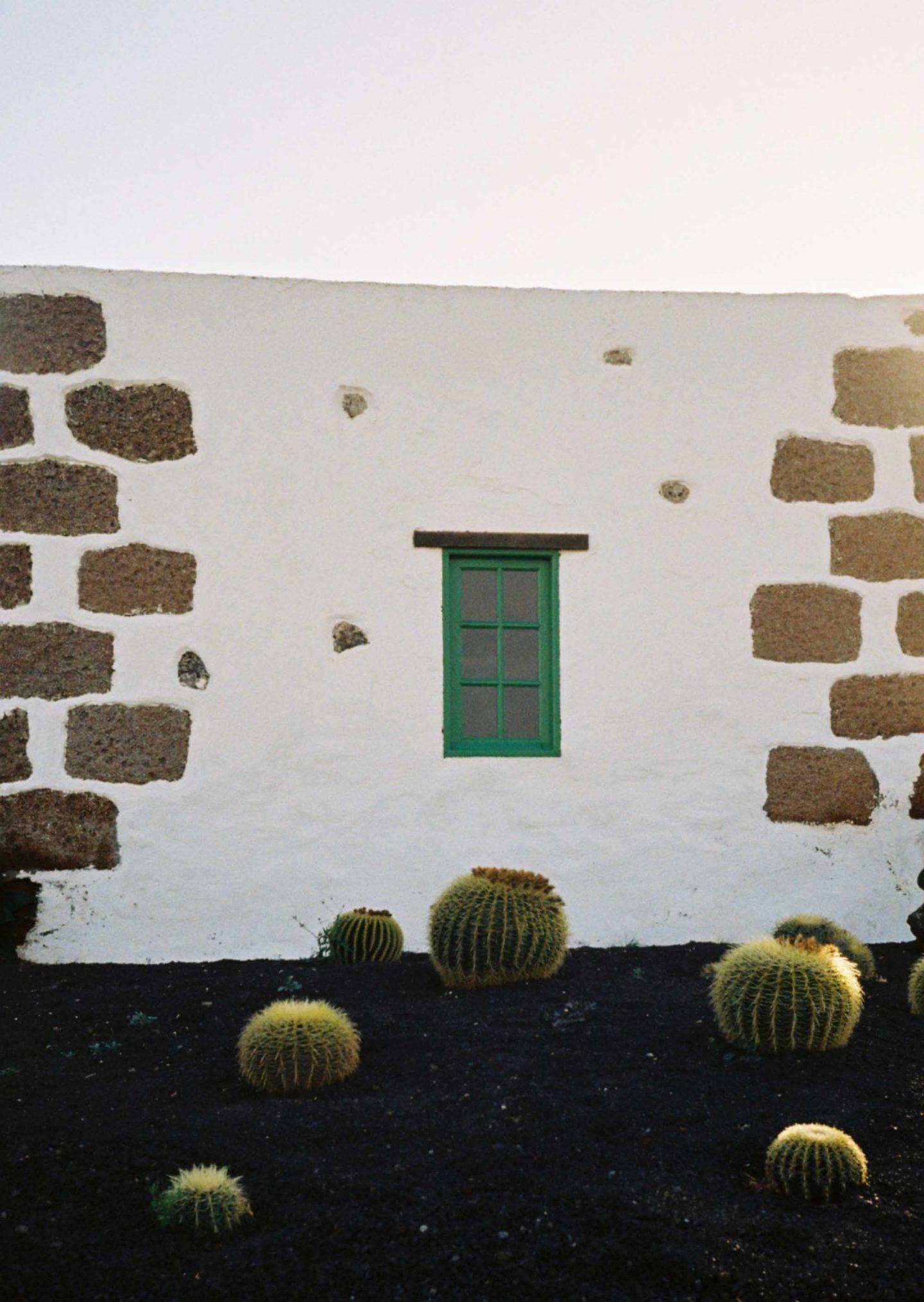 IGNANT-Photography-Arturo-Bamboo-Lanzarote-6