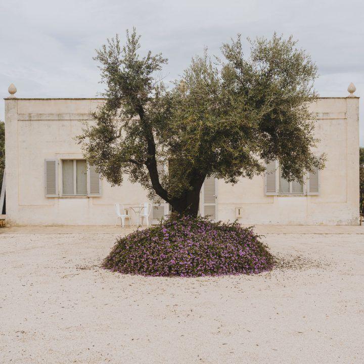 IGNANT-Travel-Andrew-Trotter-Villa-Castelluccio-1