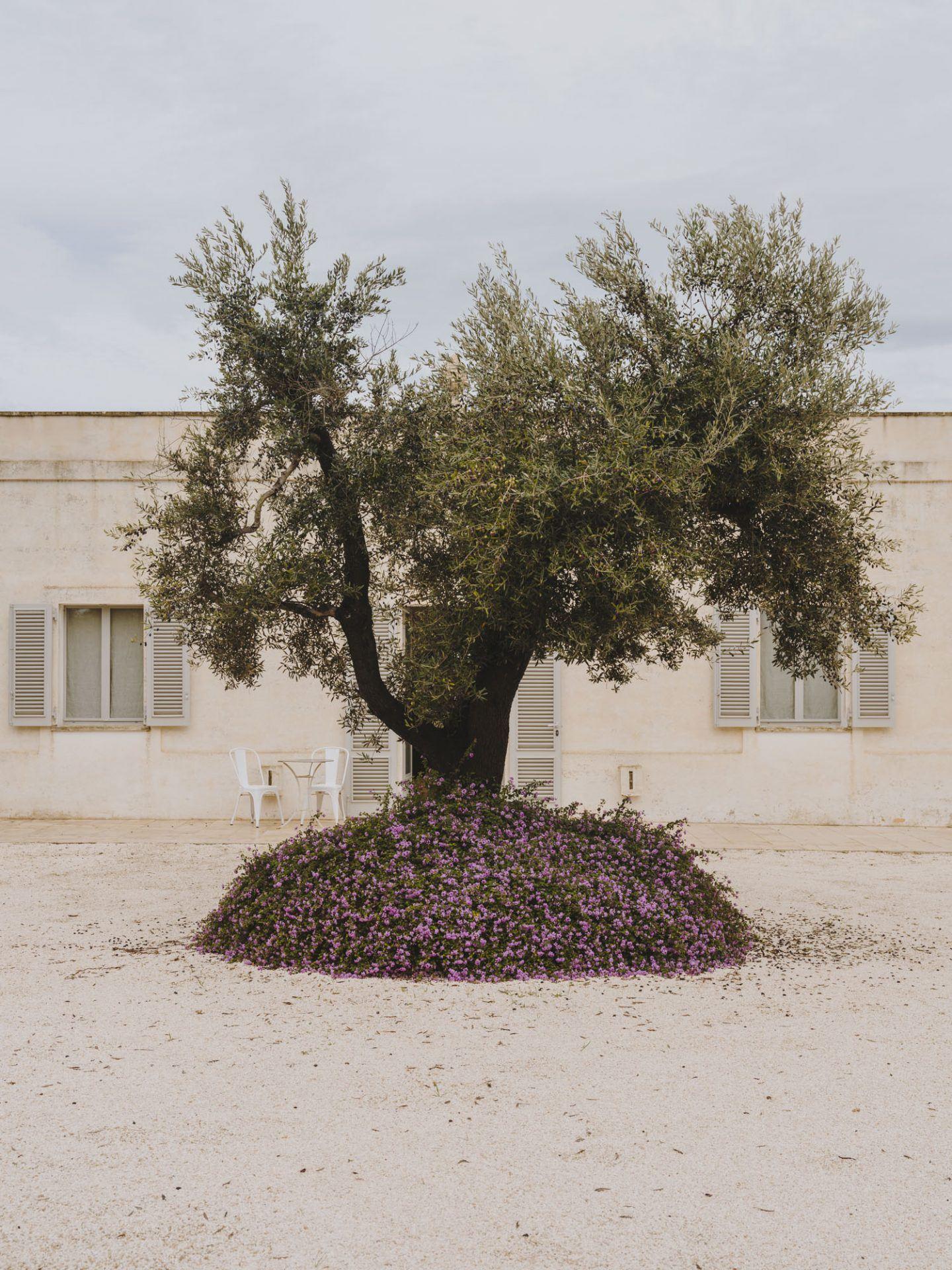 IGNANT-Travel-Andrew-Trotter-Villa-Castelluccio-33