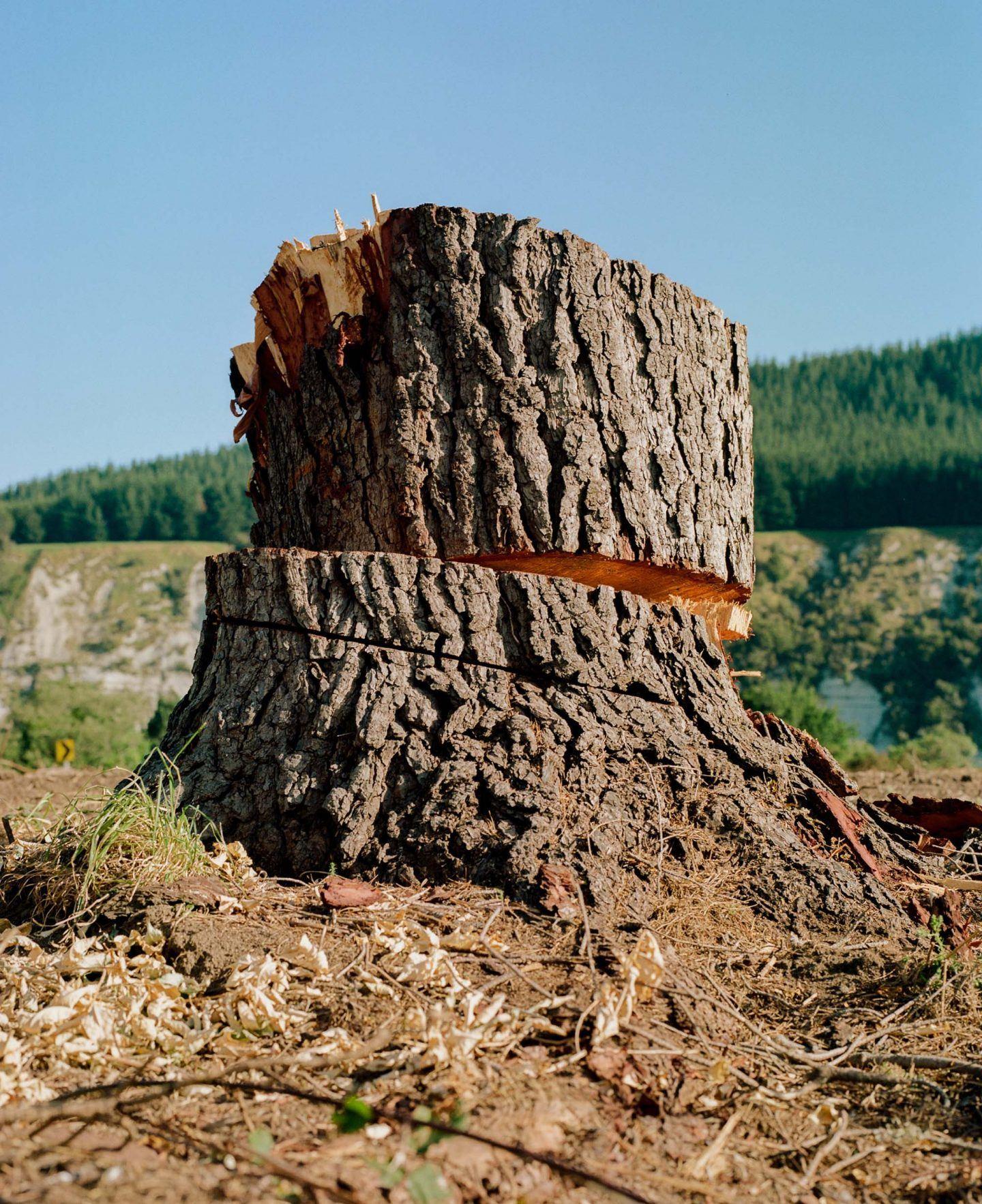 IGNANT-Photography-Derek-Henderson-15