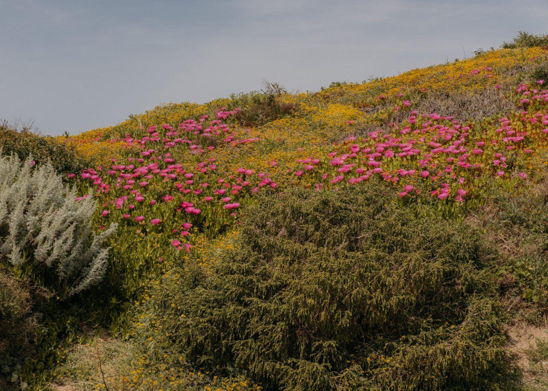 IGNANT-Photography-Maximilian-Virgili-Sardinia-13