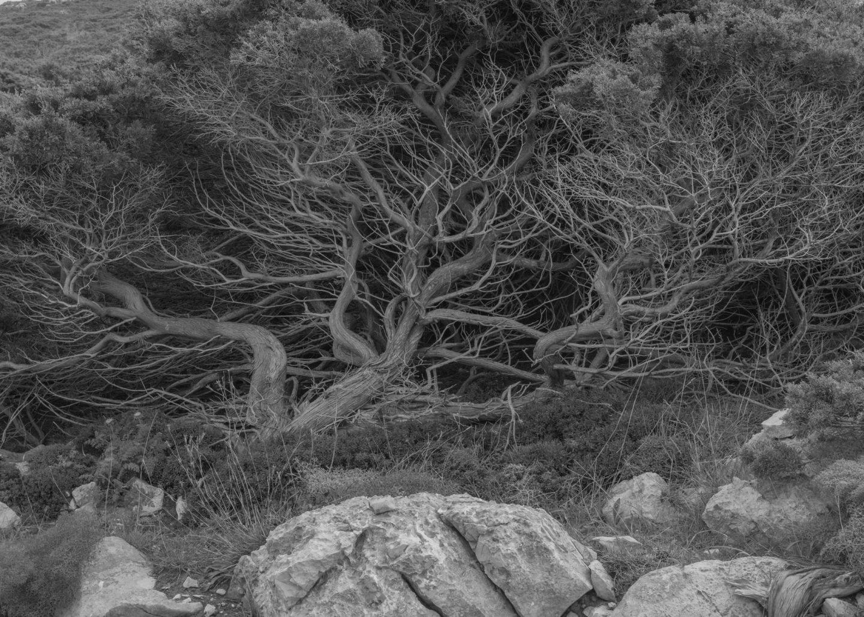 IGNANT-Photography-Maximilian-Virgili-Sardinia-38
