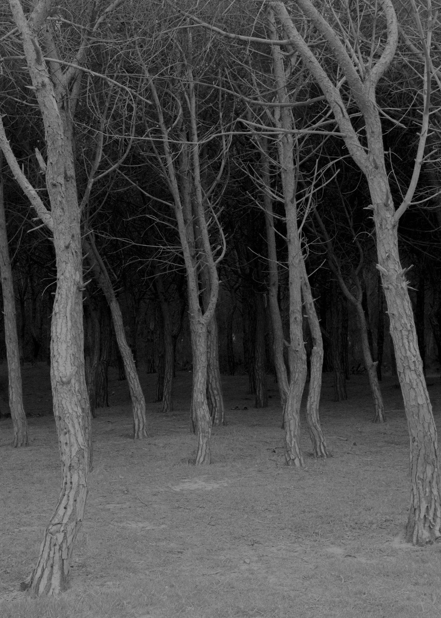 IGNANT-Photography-Maximilian-Virgili-Sardinia-43
