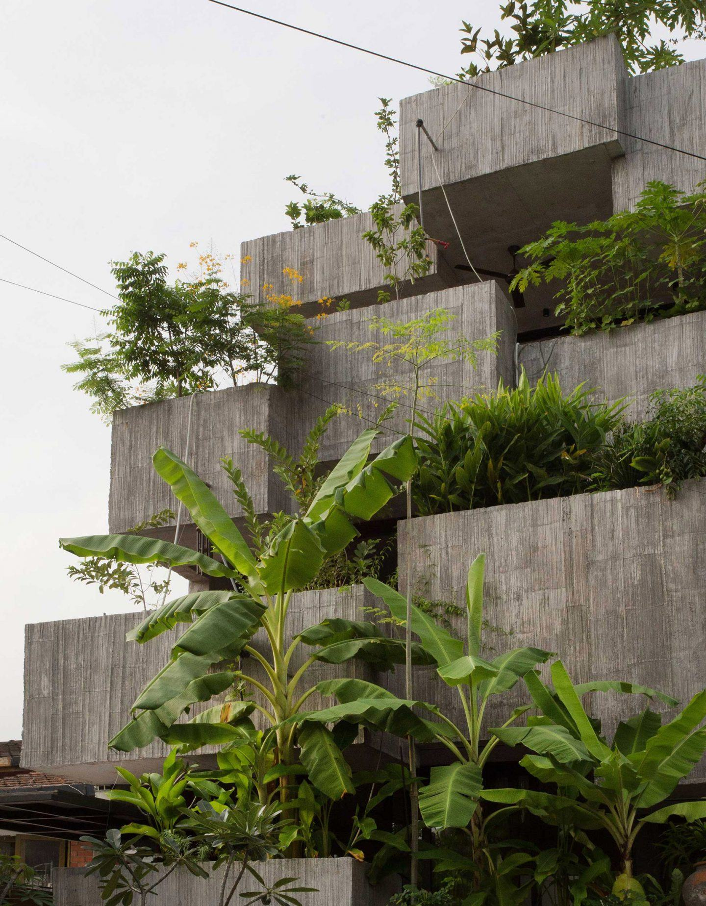 IGNANT-Architecture-Formzero-Planter-Box-House-001