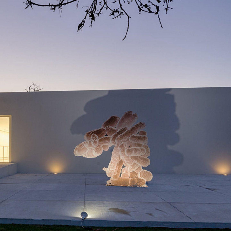 IGNANT-Art-Galeria-Duarte-Sequeira-Immortality-Future-017