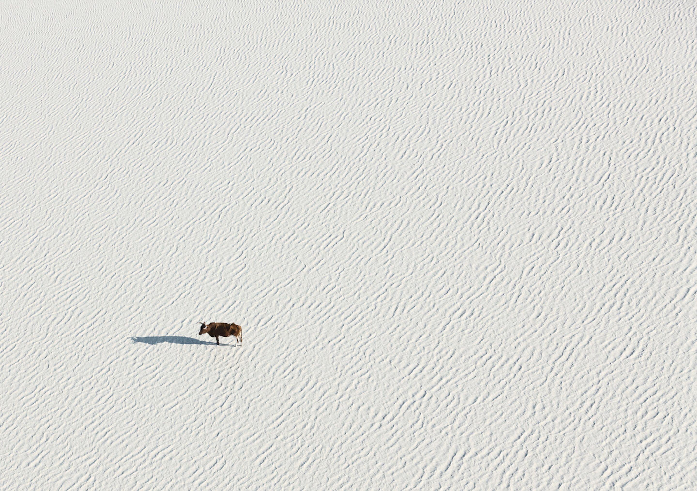 IGNANT-Photography-Zack-Seckler-Aerial-Botswana-001