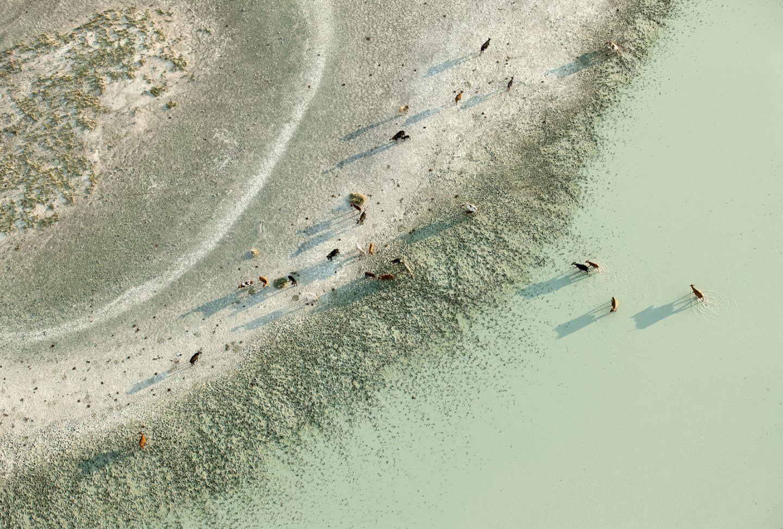 IGNANT-Photography-Zack-Seckler-Aerial-Botswana-004