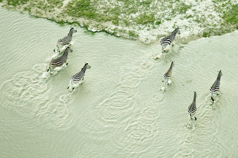IGNANT-Photography-Zack-Seckler-Aerial-Botswana-005