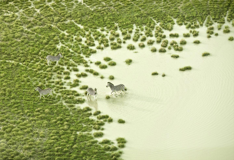 IGNANT-Photography-Zack-Seckler-Aerial-Botswana-006